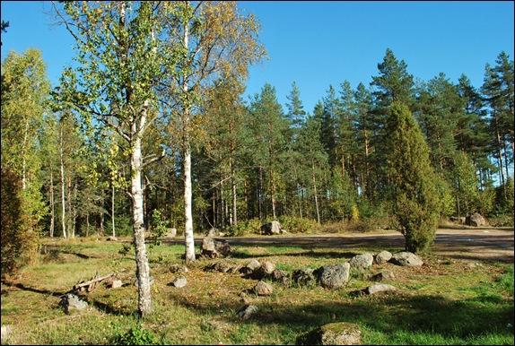 Финляндия, лесная стоянка